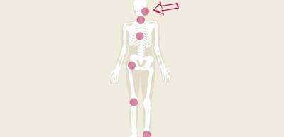 Abbildung ganzheitliche Behandlung Kieferorthopädie